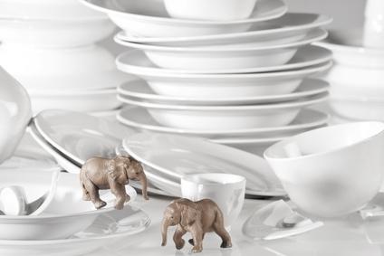 Elefanten in mitten zerbrochenen Geschirrs