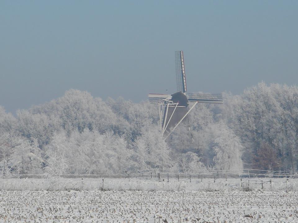 windmolen in sneeuw